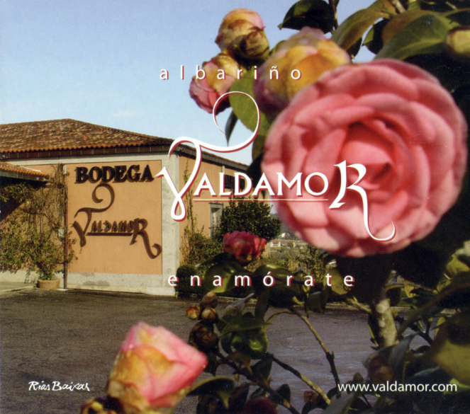 01-albarino-valdamor-enamorate-rias-baixas